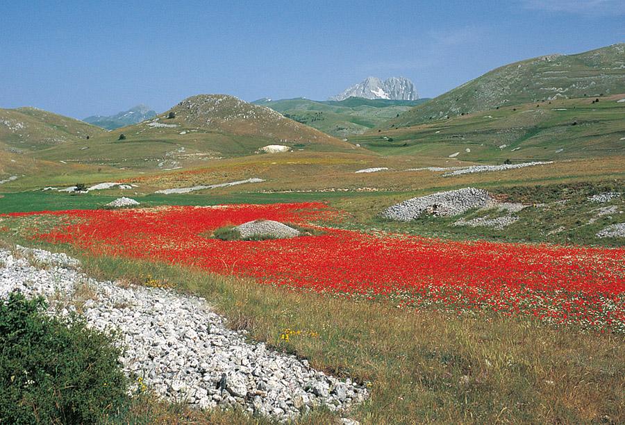 Gran Sasso Und Monti Della Laga Wandern In Italien Wanderungen Zwischen Alpen Und Mittelmeer